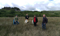 Surveying for marsh flies in Mulranny with the Applied Ecology Unit